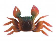DTD Crab XL 110mm